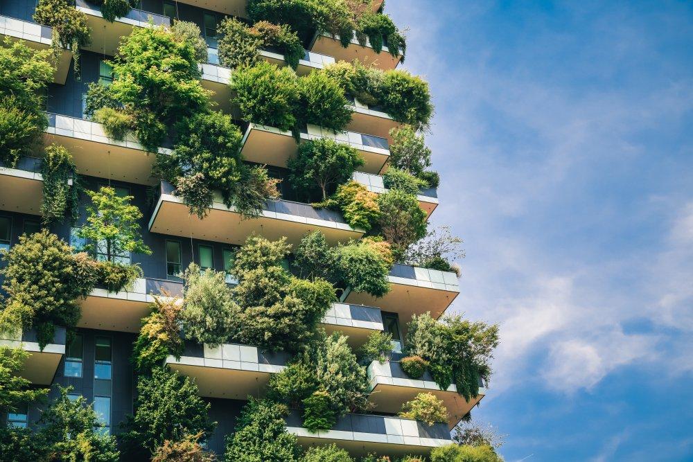 udržitelná města.jpeg